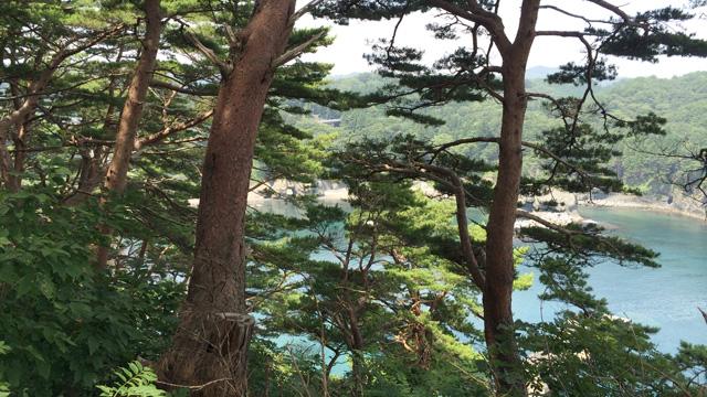 浜ゆり展望台西